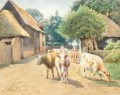 william sydney cooper cattle
